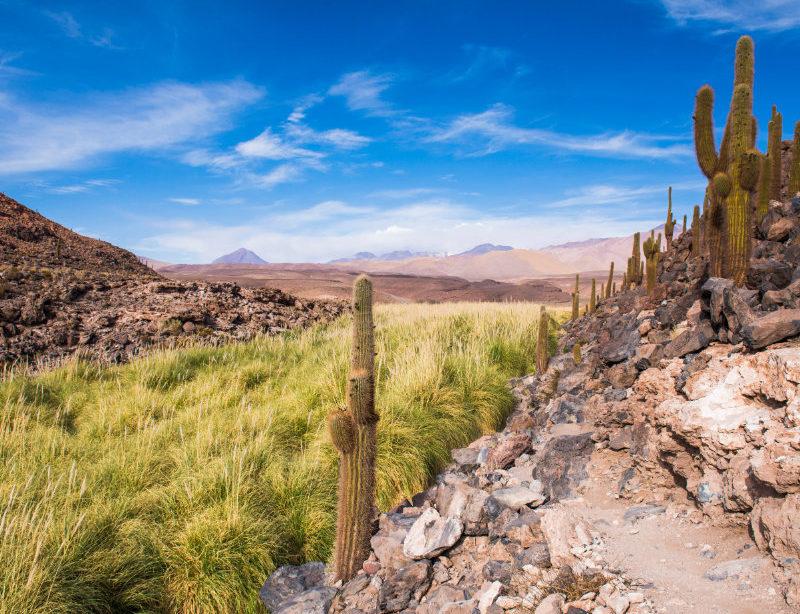 Luxusreise Chile Kachel 1
