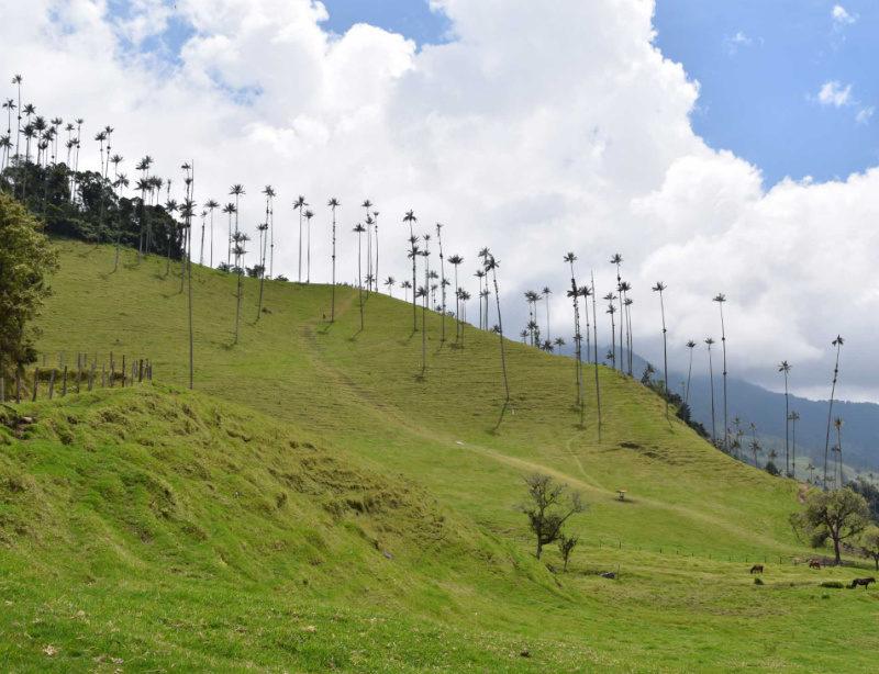 Luxusrundreise Kolumbien Kachel
