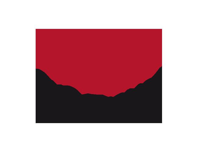 SvS Travel Logo